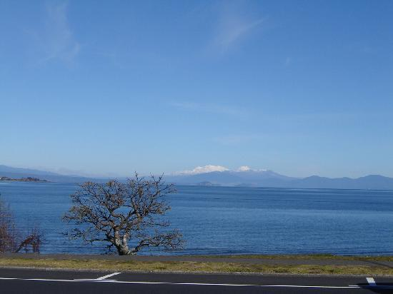 Wellesley on the Lake Taupo: Vista desde el restaurant