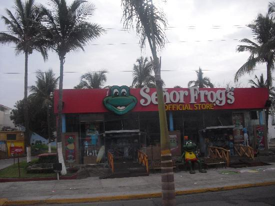 Costa de Oro Beach Hotel: sr frogs
