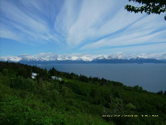 Alaska Redfish Lodge: a trip to homer