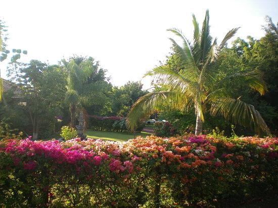 Hotel La Tierra Prometida : Bienvenido a La Tierra Prometida