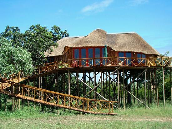 Pezulu Tree House Game Lodge: Dream Treehouse-Pezulu