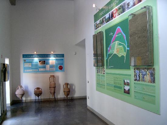 Castagneto Carducci, Italia: Guado al Melo's museum