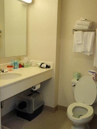 Extended Stay America - Peoria - North: Queen Studio Bathroom 1