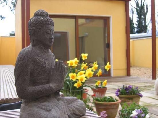 Nua Haven: Buddha in the garden