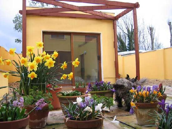 Nua Haven: the garden and our meditation room