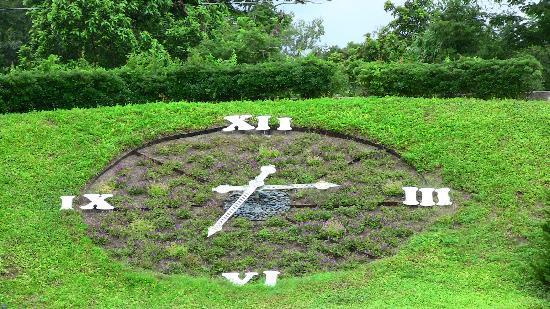 Harry P. Leu Gardens: Floral Clock