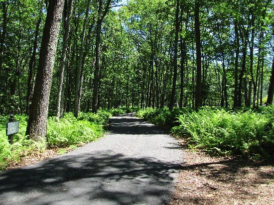 The Lodge at Woodloch: Nature Trail
