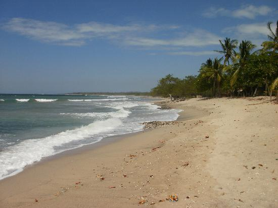 Cafe Playa Negra : playa negra