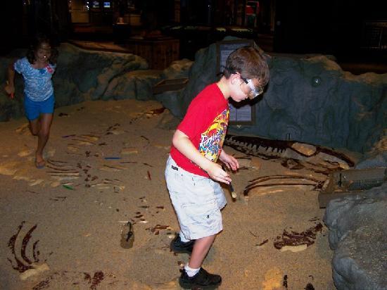 Birmingham, ألاباما: kids digging for dinos!