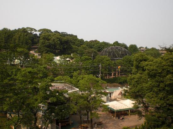 Fukuoka, Japan: 坂の上からの景色