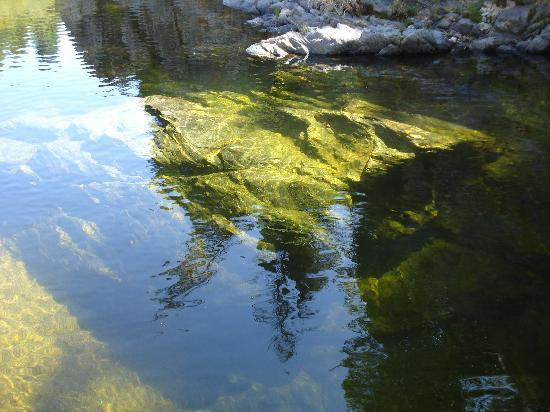 Alpa Corral: El agua, un espejo