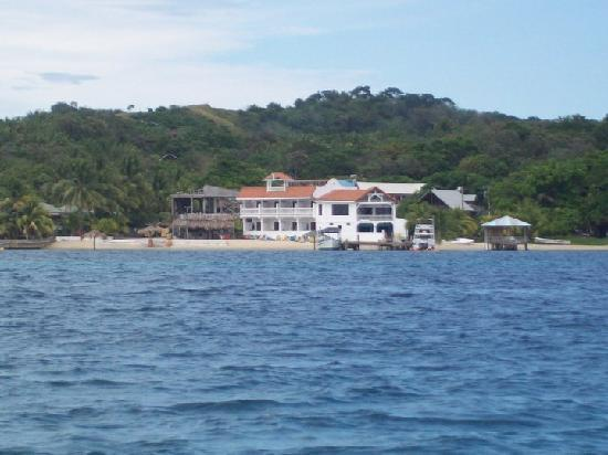 Sueno Del Mar Resort: view of the hotel from the boat