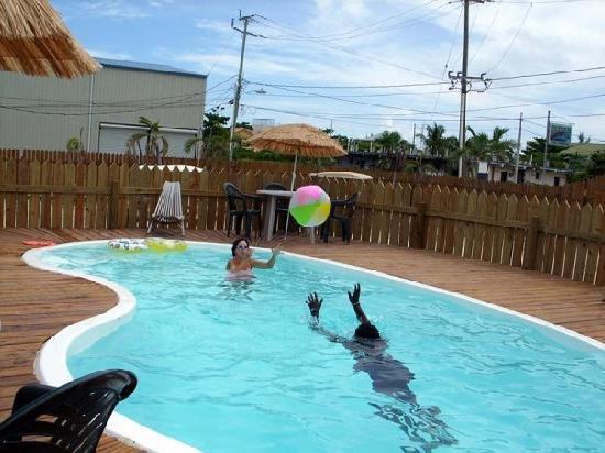 Pedro's Inn Backpacker Hostel: Swimming Pool at Pedro's Backpackers Hostel
