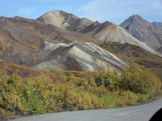 Denali National Park and Preserve, Αλάσκα: Even the hills are colorful