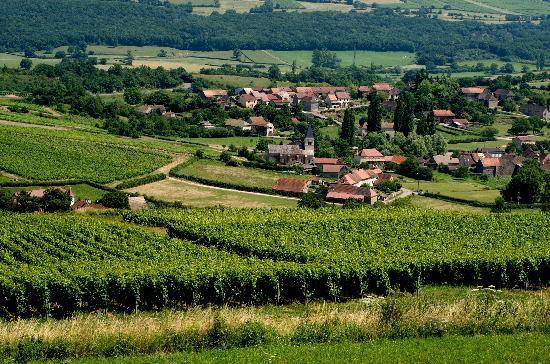 La Montagne de Brancion: the view from your room ...