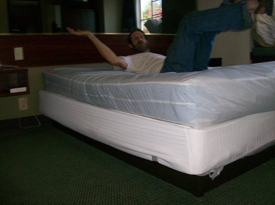 Motel 6 Gastonia: sway in the bed is bad