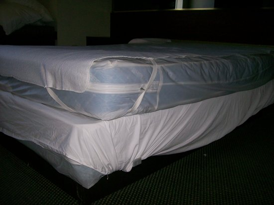 Motel 6 Gastonia: another room