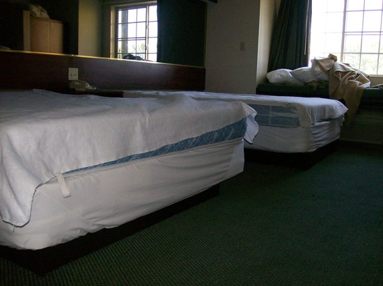 Motel 6 Gastonia: another  room yet  the same shape