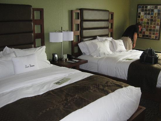Doubletree Collinsville/St. Louis: comfy beds!