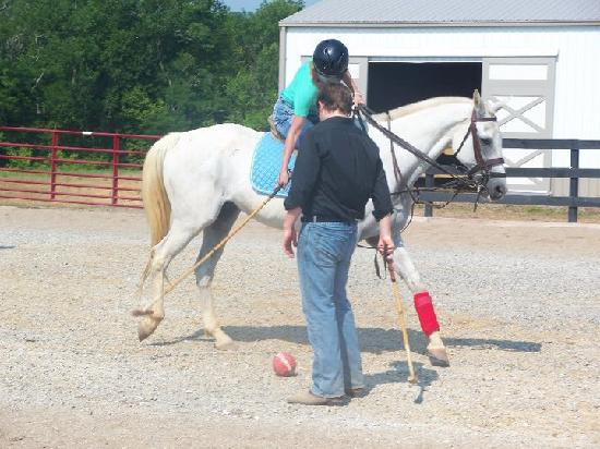 Louisville Equestrian Center : Having Fun at LEC