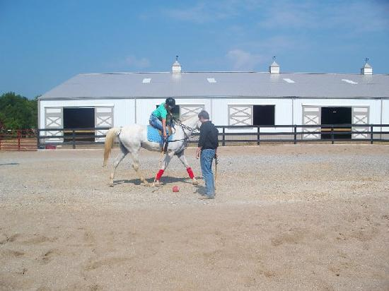 Louisville Equestrian Center : Enjoying the Lesson at LEC