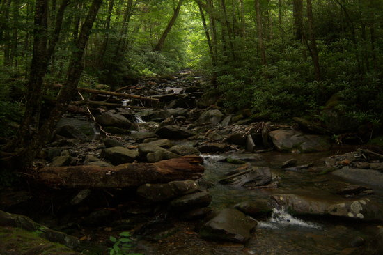 Great Smoky Mountains Nationalpark, TN: Smoky Mountain National Park