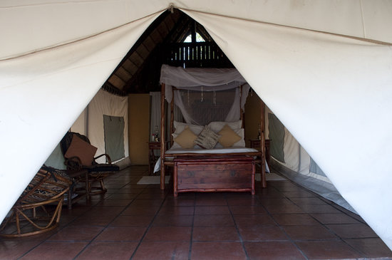 Pungwe Bush Camp: My Tent