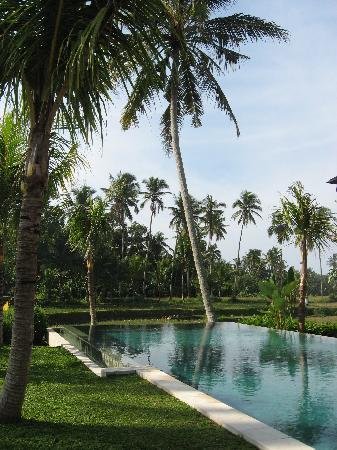 Villa Sabandari: Swimming pool and garden