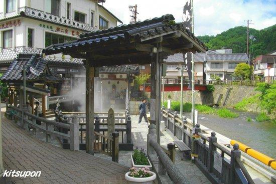 湯村温泉, 荒湯の全景です