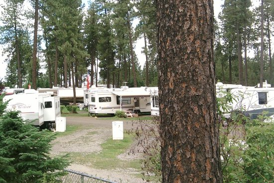 Photo of Ponderosa Falls RV Resort Cheney