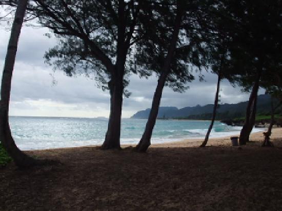 Laie Beach Park: 静か