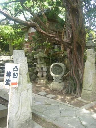 Uwajima, Japan: 老若男女問わずワクワク^ドキドキ^^