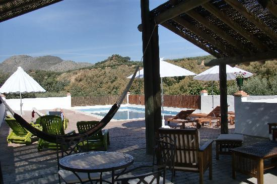 another view of the pool and Casa Olea