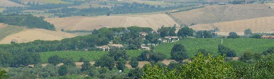 Villa Acquaviva: il relais nel contesto del vigneto