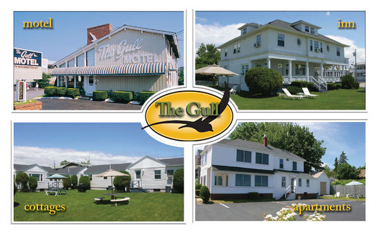 写真The Gull Motel, Inn and Cottages枚