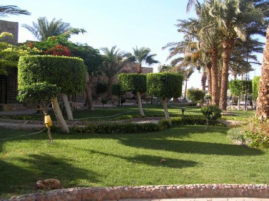 Jewels Sahara Boutique Resort: garden