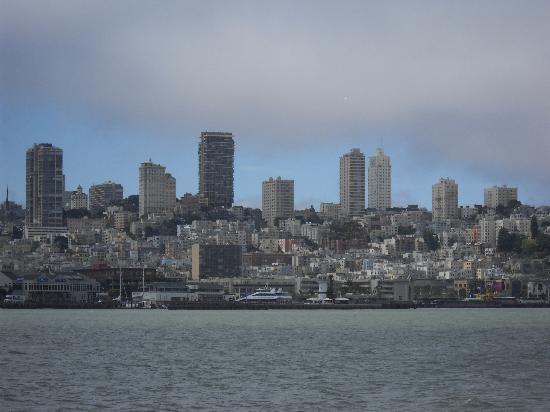 San Francisco Sailing Company: Cityscape from the water
