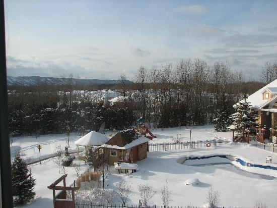 Georgian Bay Hotel & Conference Centre : Winter in Collingwood