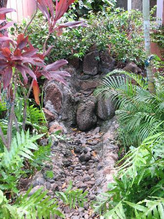 Maui Garden Oasis: Beautiful gardens!
