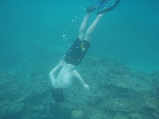 Fiyi: Snorkeling at Fiji