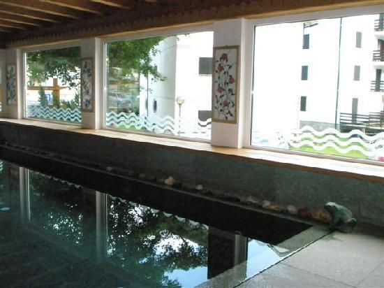 Sport Hotel Alpina: piscina