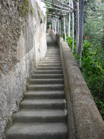 Villa Santa Maria: Those stairs...