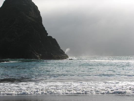 Whaleshead Beach Resort: Appropriately named Whalehead beach