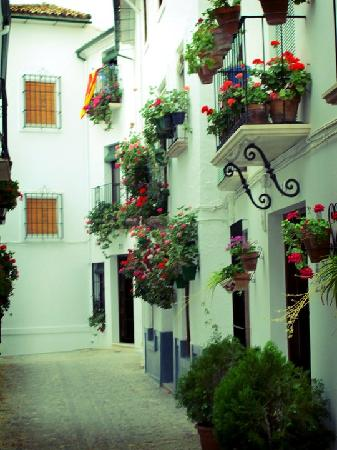 Casa la Nuez: Typical sight in the lovely Priego de Cordoba (nearby)