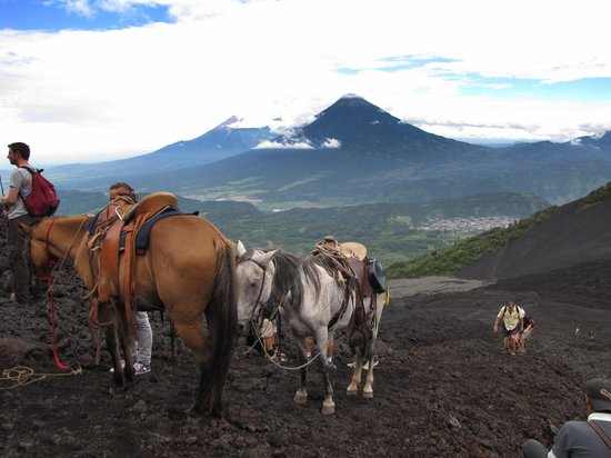 Volcan Pacaya Tour from Antigua