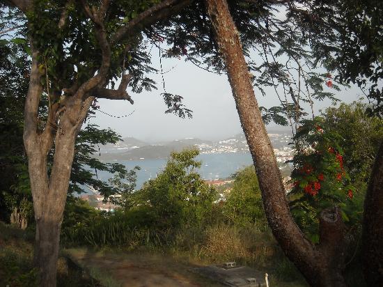Tutu, St. Thomas: View
