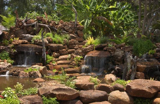 Amanzi Lodge: Waterfall at the lodge
