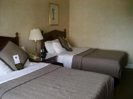 Benson Hotel: The room