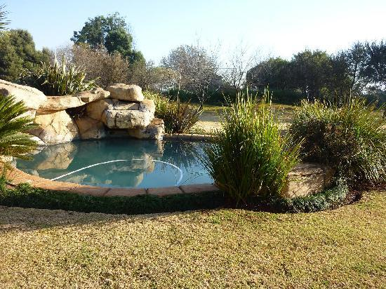 African Silhouette Guesthouse: Beautiful pool