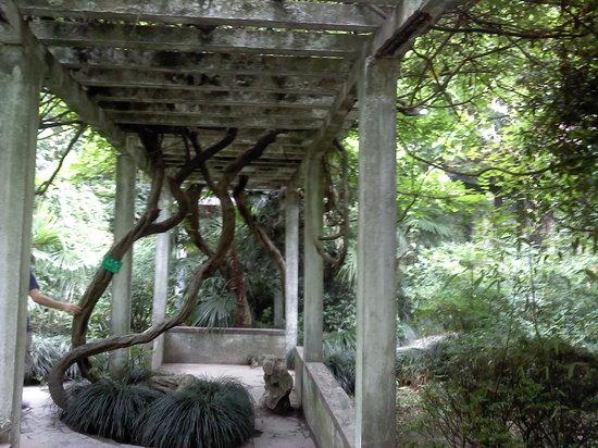Ρουγκάο, Κίνα: Old Rugao